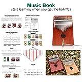 LEMEIYI Kalimba 17 Keys Thumb Piano with Study