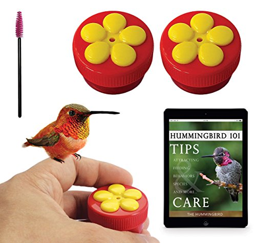 Aroma Trees 2 Mini Hand Held Hummingbird Feeders with Instructions and - Stores Nectar Card