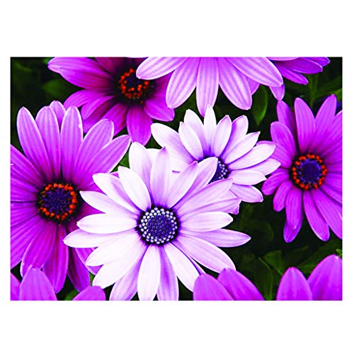 Top 10 diamond painting daisy flowers for 2020