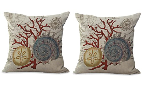 Set of 2 sea cookie sand dollar coral