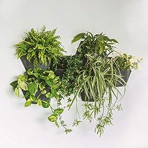 Vaso da giardino verticale MH esagonale 350x 200x 285 mm con auto-irrigazione. Crea un mosaico vegetale in ambienti… 1 spesavip