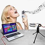 Jeystar Professional Condenser Microphone Audio