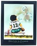 NFL Football Miami Dolphins Dan Marino Print Artwork Framed F6513A