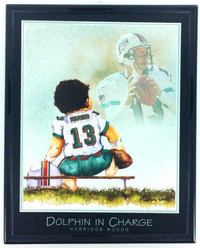 Miami Dolphins Framed Wall - NFL Football Miami Dolphins Dan Marino Print Artwork Framed F6513A