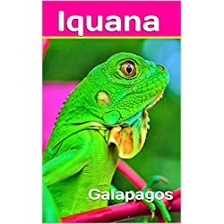 Iquana: Galapagos (Photo Book Book 200)