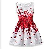 2018 Girls Dress Summer Butterfly Floral Print Teens Dresses for Girls Designer Formal Party Dress Kids 6-12Year old (Size : 140)