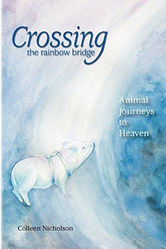Crossing the Rainbow Bridge: Animal Journeys to Heaven by Colleen Nicholson (2010-12-03)
