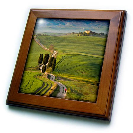 - 3dRose Danita Delimont - Italy - Cypress trees and winding road to villa near Pienza, Tuscany, Italy - 8x8 Framed Tile (ft_277543_1)