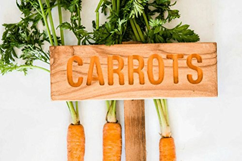 (CARROTS Garden Sign, Garden Markers, Painted & Oil Sealed Cedar Wood: Hand Routed, Garden Markers, Custom Garden Sign, Personalized Marker)