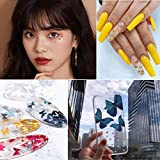Kalolary 12 Color 3D Butterfly Nail Art Glitter