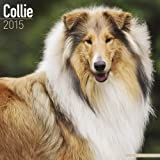 Collie Calendar - Just Collie Calendar - 2015 Wall calendars - Dog Calendars - Monthly Wall Calendar by Avonside