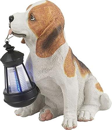 Perro con farol solar LED Solar Luz solar jardín lámpara decoración jardín decoración Farol (Solar