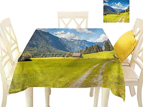 WilliamsDecor Outdoor Picnics Nature,Julian Alps Mountain Valley Dinning Tabletop Decoration W 36