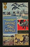 Amazing but True Stories About Animals, Doug Storer, 0671779982