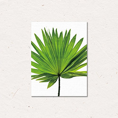 ChezMax Wall Art on Canvas Print Artwork Pictures for Home Decor Green Tropical Plants Palm Leaves 11.8