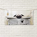 Chaneyhouse Pug,Hand Towel,Puppy Reading The Newspaper on The Toilet Bathroom Funny Image Pug Joke Print,Quick-Dry Towels,Cream Black White Size: W 20'' x L 20''