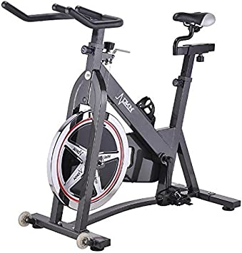 Gym Bike DKN Z-11D Indoor Bike Spinning Cycle Bicicleta: Amazon.es ...