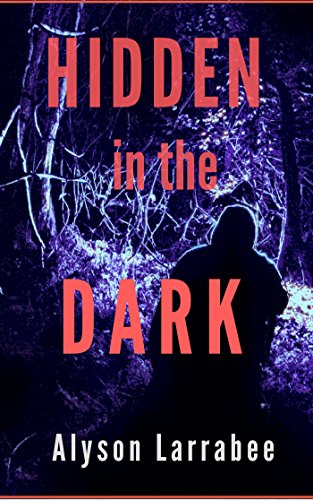 Hidden in the Dark (Harper Flagg Book 1) cover
