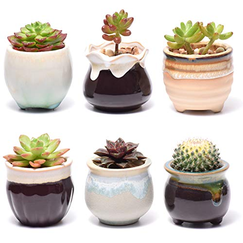 - Plant Pots for Succulents, Small Ceramic Planters 2.5 Inch with Drainage, Set of 6 Pots for Plants