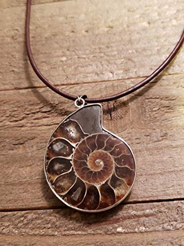 (Fossil Ammonite Pendant Leather Necklace Stone Jewelry Boho (N654))