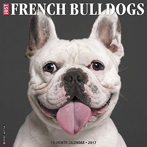 Just French Bulldogs 2017 Wall Calendar