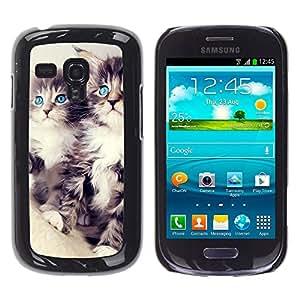 COVERO Samsung Galaxy S3 MINI NOT REGULAR! I8190 I8190N / Maine coon kittens cat longhair / Prima Delgada SLIM Casa Carcasa Funda Case Bandera Cover Armor Shell PC / Aliminium