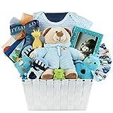 Baby Boy Gift Basket by Pellatt Cornucopia with Baby Boy Essentials and Toys