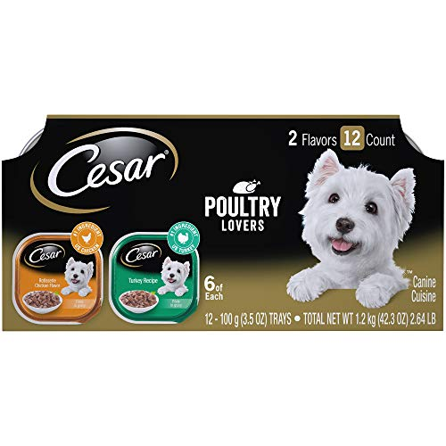 Cesar Wet Dog Food Filets in Gravy Poultry Lovers Variety Pack, (24) 3.5 oz. Trays