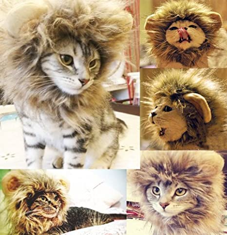 Mercurymall® Neuf Joli melena peluca del León Para Ropa de gato gatito (talla:
