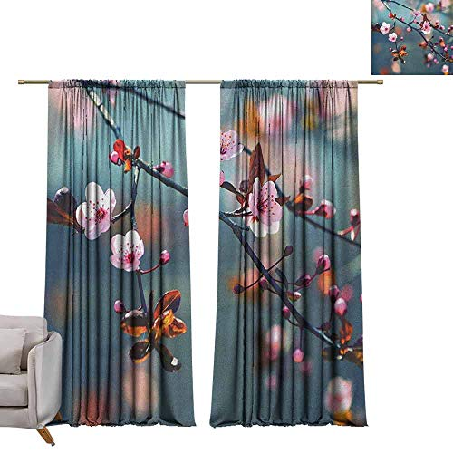 - berrly Thermal Insulated Room Darkening Window Shade Nature,Japanese Blooming Cherry Tree Flowers on Branch Sakura Theme Picture, Pale Pink Orange and Blue W72 x L84 Blackout Window Curtain Panel