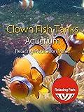 Clown Fish Tanks Aquarium with Relaxing Meditation Music - Relaxing Park