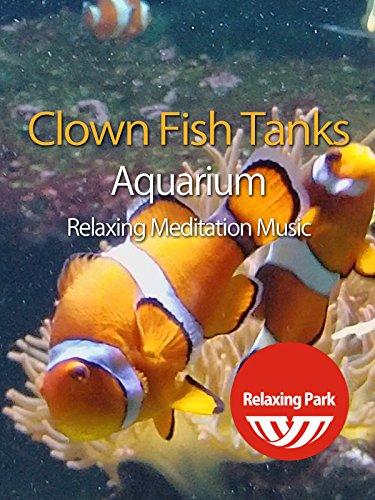 Clown Fish Tanks Aquarium with Relaxing Meditation Music - Relaxing (Clown Fish Aquarium)