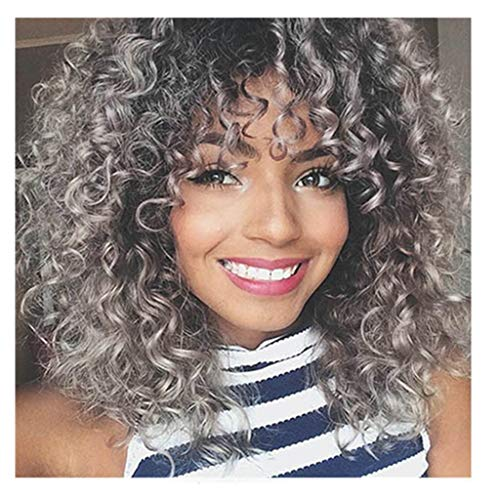 Amaping Gradient Color Afro Curly Mix Gray Hair Women Wigs Simulated Human Hair With Baby Hair Full High Density Mixed Colors Synthetic Wig (Curly Gray for Black Women) -