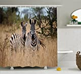 zebra fabric shower curtain - Ambesonne Wildlife Decor Shower Curtain by, Kenya with Zebras in the High Bushes Looking at the Camera Striped Unique Animal, Fabric Bathroom Decor Set with Hooks, 75 Inches Long, Multi