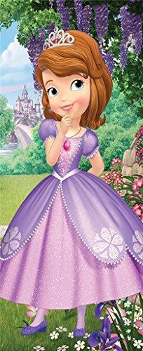 Disney Princess Sofia the First Clubhouse Fiber Reactive Beach Towel - Garden Bloom