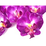 50-Small-Purple-Phalaenopsis-Orchid-Silk-Flower-Heads-2-Artificial-Flowers-Heads-Fabric-Floral-Supplies-Wholesale-Lot-for-Wedding-Flowers-Accessories-Make-Bridal-Hair-Clips-Headbands-Dress
