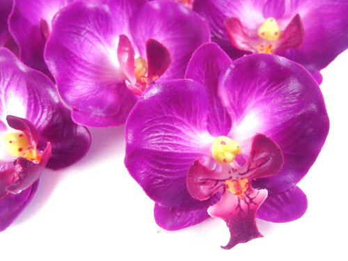 (50) Small Purple Phalaenopsis Orchid Silk Flower Heads - 2