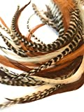 Thick Hair Feathers and Beads, 100% Real Rooster Feather Hair Extensions, Long Grizzly, Brown Fluff