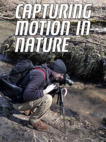(Capturing Motion In Nature)
