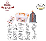 Toys : Loobani Assorted Brain Teasers Metal Wire IQ Puzzles with Plastic Box Package Great Educational Intelligence Toys for Adult Children and Student Expanding Mind 1 Set 30Pcs