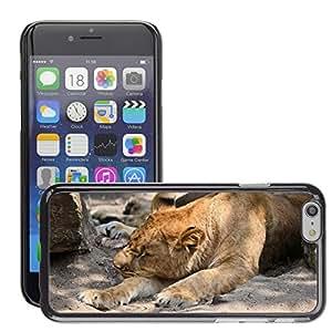 "Etui Housse Coque de Protection Cover Rigide pour // M00134270 León Leona Vida Silvestre Animal Hunter // Apple iPhone 6 4.7"""