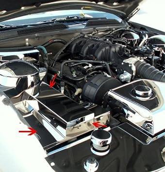 American Car Craft Ford Mustang 2005 2006 2007 2008 2009 V6 GT cromado cubierta de la caja de los fusibles Motor vestido para mostrar coche: Amazon.es: ...