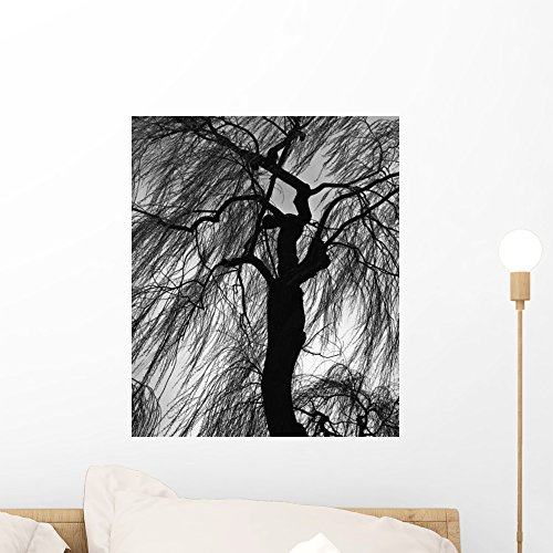 Wallmonkeys Weeping Willow Wall Decal Peel and Stick Graphic WM154819 (18 in H x 15 in W)