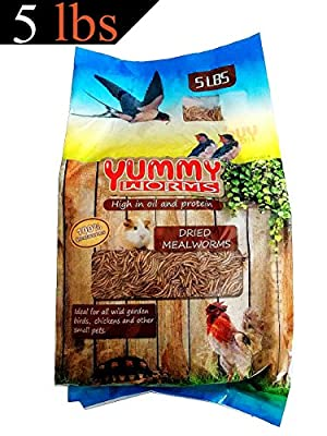 YUMMYWORMS bulk Dried Mealworms - Intact High Protein Treats for Chickens and Wild Birds, 1 Pound