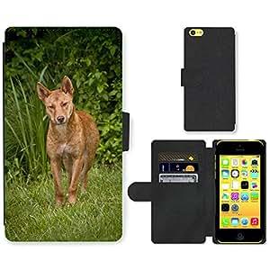 Super Stella Cell Phone Card Slot PU Leather Wallet Case // M00106317 Dingo Wild Dog Australia Wolf // Apple iPhone 5C