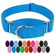 Country Brook Design - 3/4 Inch Martingale Heavyduty Nylon Dog Collar - Ice Blue - Small
