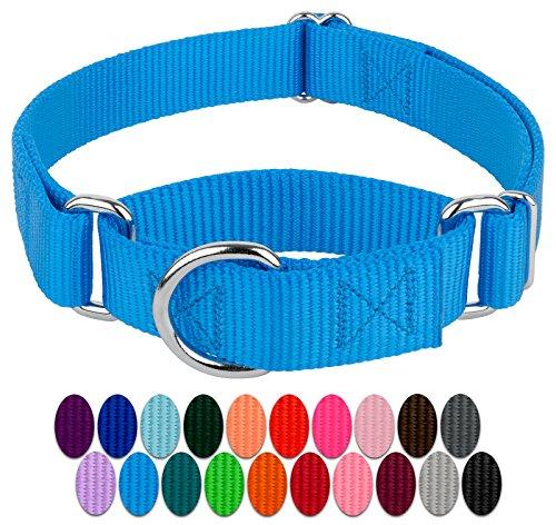 Country Brook Design | 3/4 Inch Martingale Heavyduty Nylon Dog Collar - Ice Blue - Small