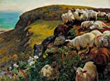 Oil Painting 'William Holman Hunt - Our English Coasts, 1852 (`Strayed Sheep'),1852' Printing On High Quality Polyster Canvas , 8x11 Inch / 20x28 Cm ,the Best Gym Gallery Art And Home Decoration And Gifts Is This Cheap But High Quality Art Decorative Art Decorative Canvas Prints