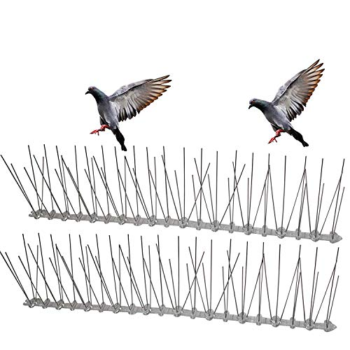 Flexible Stainless Steel Bird Spikes with Plastic Base, 20 Foot Coverage 12 Strips Barrier for Pigeons and Other Small Birds (5ft (3 Strips))