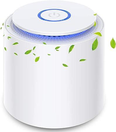 Purificador de Aire Portátil con Filtro HEPA Eficiente, USB Filtro de Aire de Escritorio con Luz Nocturna y Función de Aromaterapia, 100% Sin Ozono, Eliminar Polvo, Humo, Olor, Caspa de Mascotas: Amazon.es: